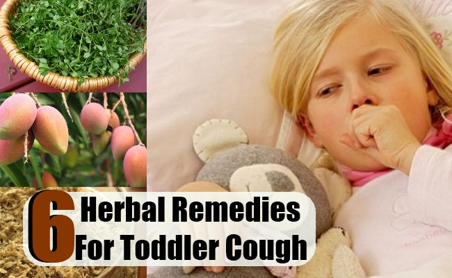 Herbal Remedies For Toddler Cough