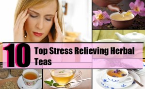 10 Top Stress Relieving Herbal Teas