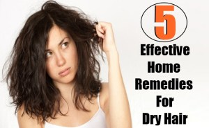 5 Effective Home Remedies For Dry Hair
