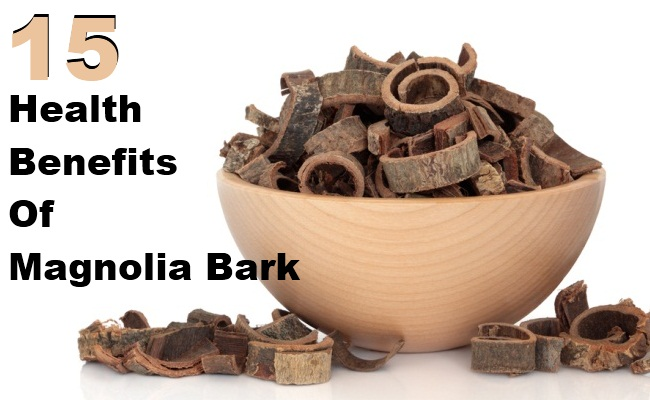 Top 15 Health Benefits Of Magnolia Bark