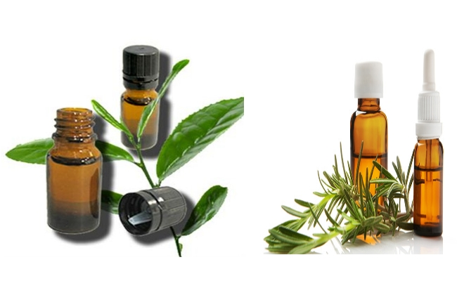 Use Tea Tree Oil With Rosemary Oil