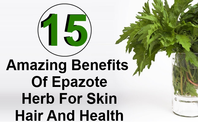 15  Amazing Benefits Of Epazote Herb For Skin Hair And Health