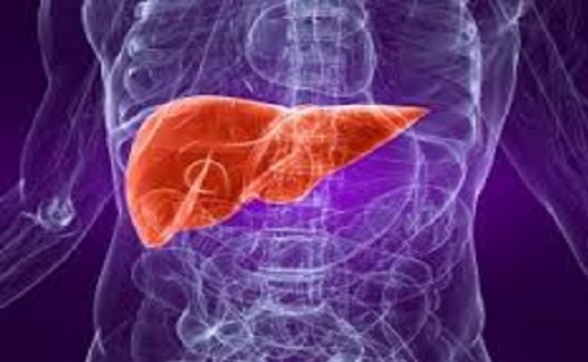 Improves The Liver Health