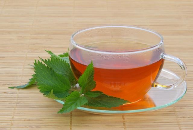 Fresh Nettle Leaves Tea