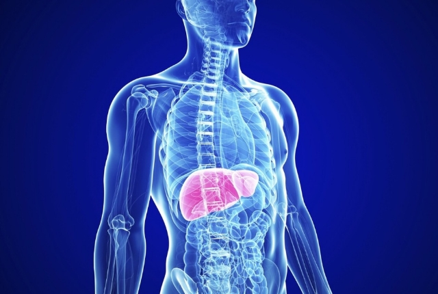 Organs Healthy