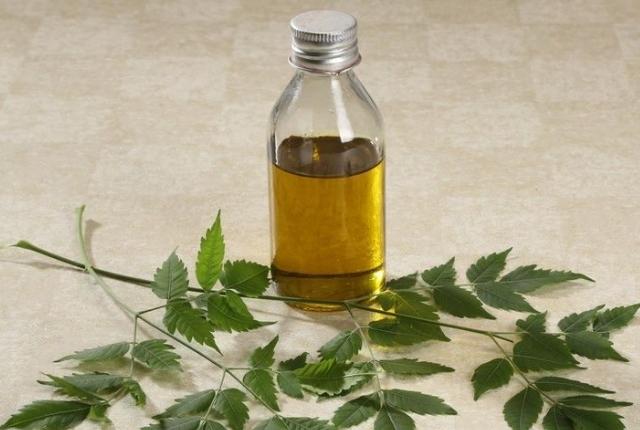Azadirachta indica Oil