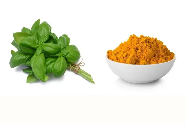Basil And Turmeric Powder Cleanser