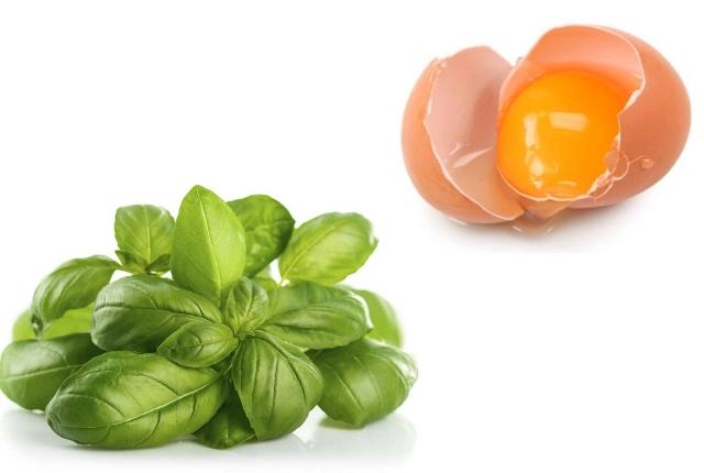 Egg basil mask