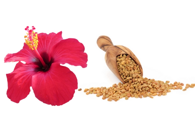 Hibiscus And Fenugreek Seeds Mask