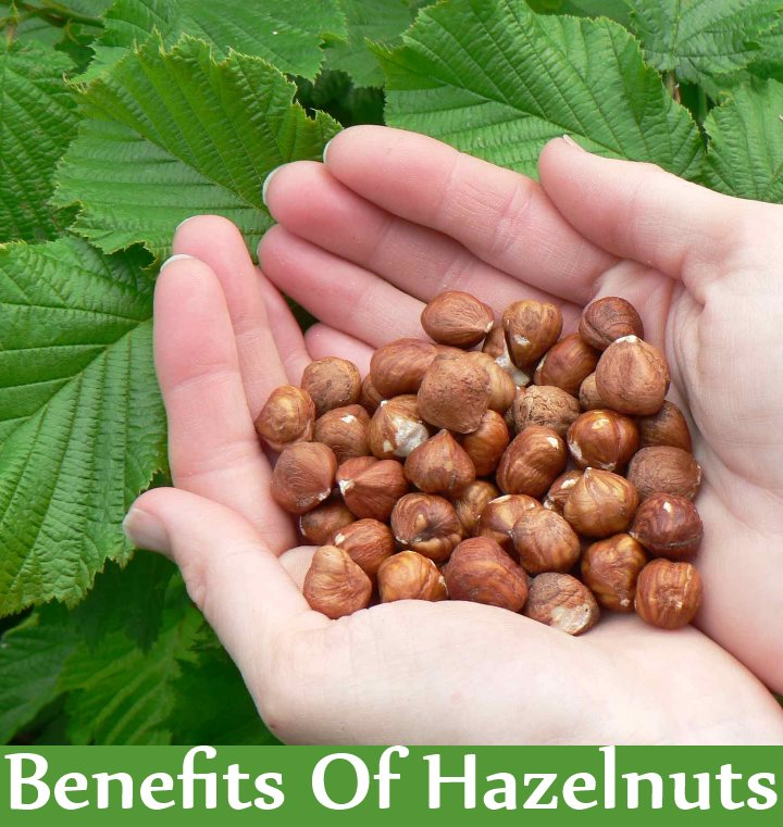 5 Amazing Benefits Of Hazelnuts