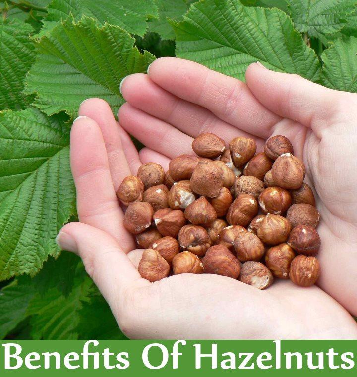 5 Amazing Benefits Of Hazelnuts