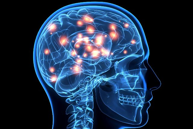 brain functioning