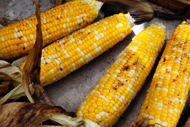Genetically Modified Foods(GMO's)