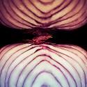 Purple Onion Cut In Half - Search Influence