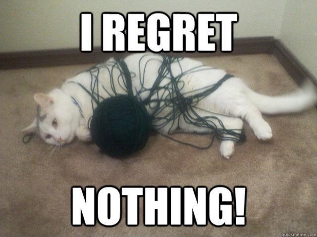 Image result for i regret nothing meme