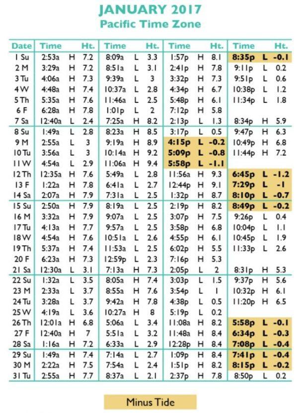 Tide Charts Santa Barbara Rebellions