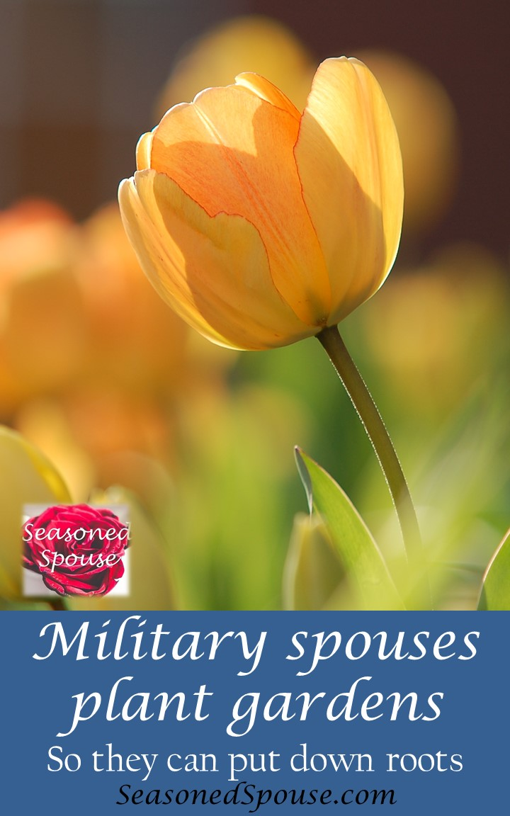 Military spouse gardens help you put down roots at a new duty station.