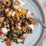 Farro with Radicchio and Chard | A hearty casserole style dish of whole grain farro with radicchio and chard. Easy, filling, and perfect for cooler fall weather. | SeasonedVegetable.com #vegetarian #wholegrain #fall