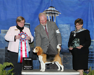 Handler Mike Kurtzner, of Sacramento, Calif., and JJ, a 15-inch beagle named after NASCAR racer Jimmy Johnson, took best-in-show honors Saturday at the Seattle Kennel Club Dog Show. They are flanked by judge Dr. Karen Ericson, of Carnation, left, and Julie Hamasaki, of the Seattle Kennel Club.