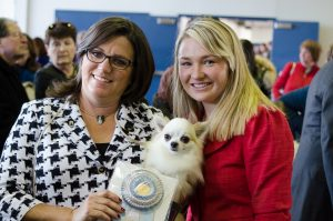 Calvin won Select Dog in Chihuahua breed competition at Westminster this year.