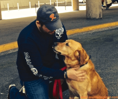 Sharing a moment. Photo from Seattle DogSpot.
