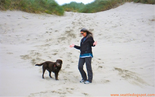 Oregon Dunes National Recreation area. Photo from Seattle DogSpot.