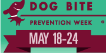 Seattle Animal Shelter Issues Tips to Prevent Dog Bites