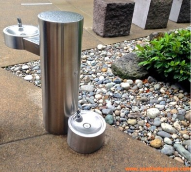 One of the dog friendly water fountains on Amazon's South Lake Union Campus. Photo from Seattle DogSpot.