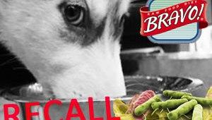 Bravo Pet Foods announces recall due to possible Salmonella contamination