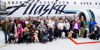 Alaska Airlines Pet Policy Now Allows Service Animals in Training to Fly Free