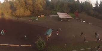 KING 5's New Day Highlights Seattle's Lesser Known Dog Parks