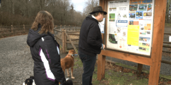Snohomish County Posts Warnings at Willis Tucker Off-Leash Area About Recent Dog Poisonings