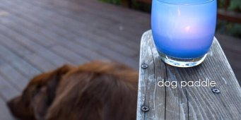 Buy a Glassybaby in August to help pet owners who can't afford veterinary care