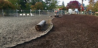 Stop Building Tiny Dog Parks in Seattle!