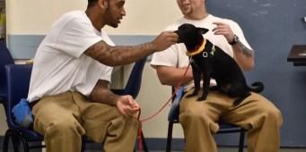 More Washington Inmates are Training Dogs