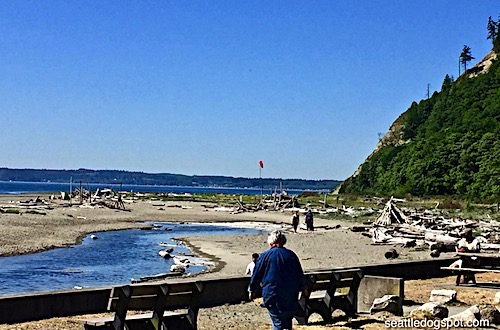 This is part of the on leash area. The red windsock in the background marks the beginning of the off leash beach.
