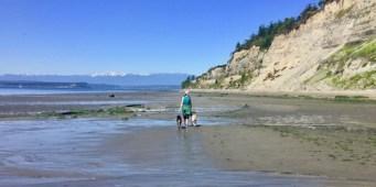 Exploring Double Bluff Off-Leash Dog Park