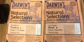 Darwin's Issues Voluntary Dog Food Recall Due to Possible Salmonella Contamination
