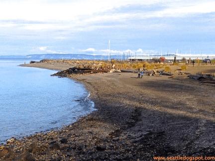 Edmonds Off-Leash Area is a Hidden Gem | Seattle DogSpot
