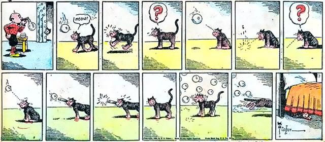 ciceros-cat