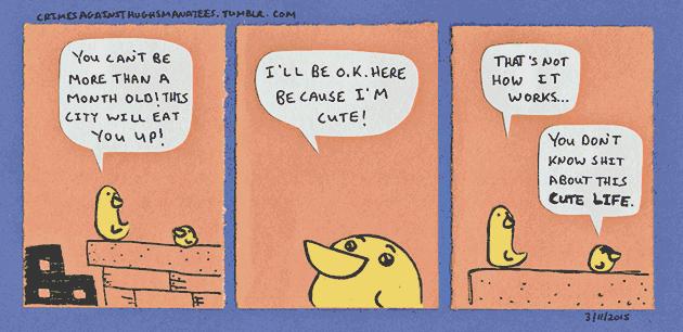 manatees-cutelife