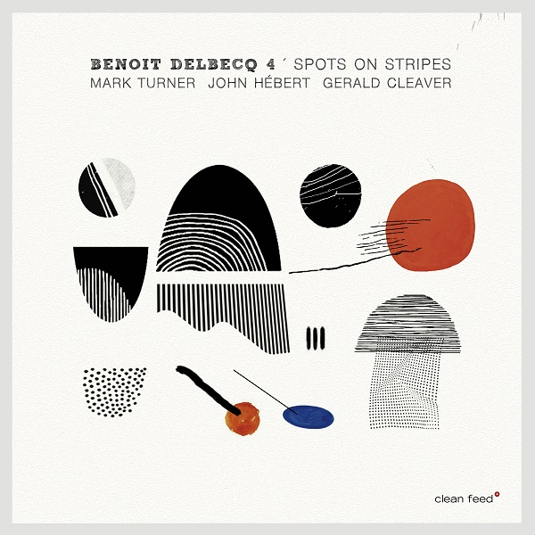 Benoît Delbecq 4, Spots on Stripes