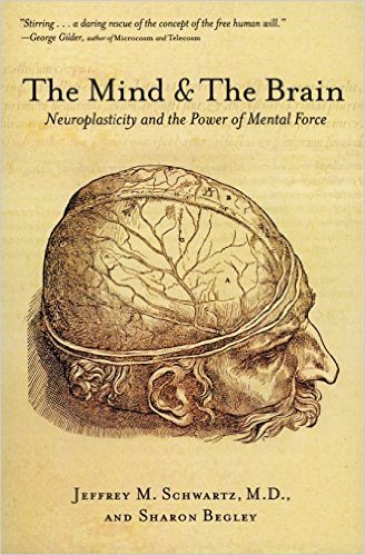 Link to The Mind and the Brain