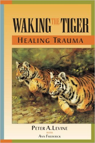 Link to Waking the Tiger