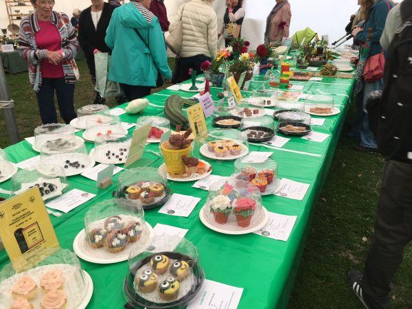 Inspiring Horticultural Show in Emsworth