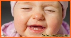 resep makanan bayi tumbuh gigi