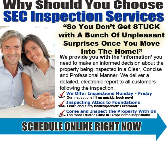 Tampa Home Inspection schedule online