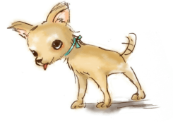 chihuahua_drawing