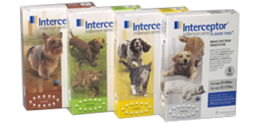 Interceptor Heartworm Flavor Tabs Product Insert