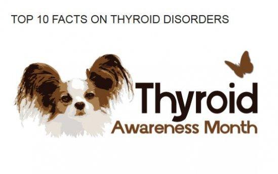 Dr Dodds Top Ten Thyroid Facts